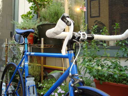 Introducing my two passions to each other; cycling meet garden